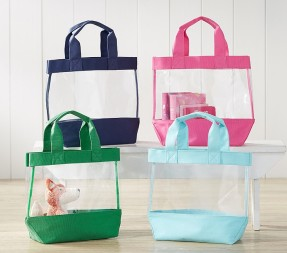 https://www.potterybarnkids.com/products/clear-icon-tote-collection/?pkey=cbeach-gear&isx=0.0.1900